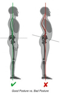 spinal movement and good posture, back strengthening exercises, spinal health and mobility